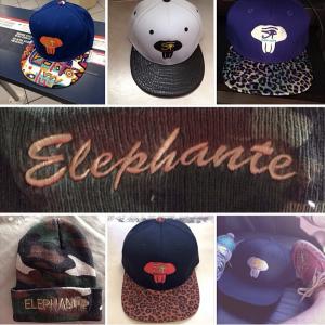 elephante 1